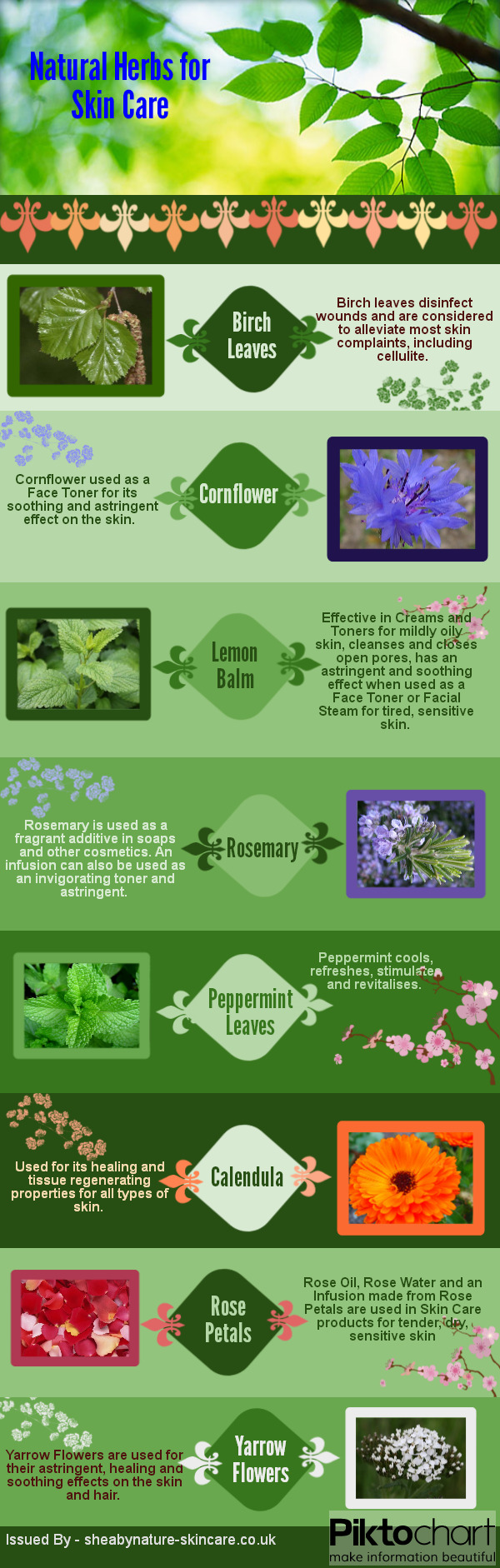 Natural_Herbs_for_Skin_Care