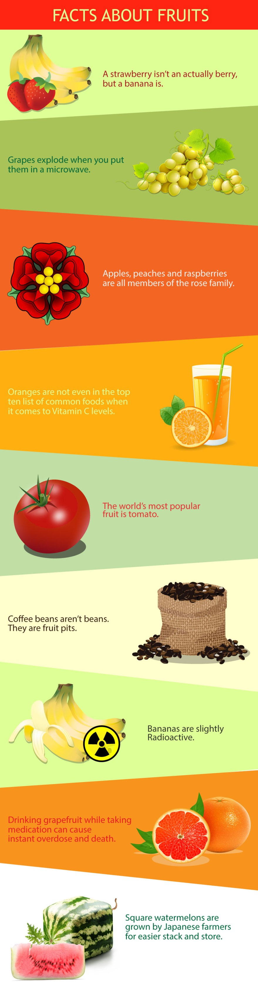 Info-Facts_about_fruits